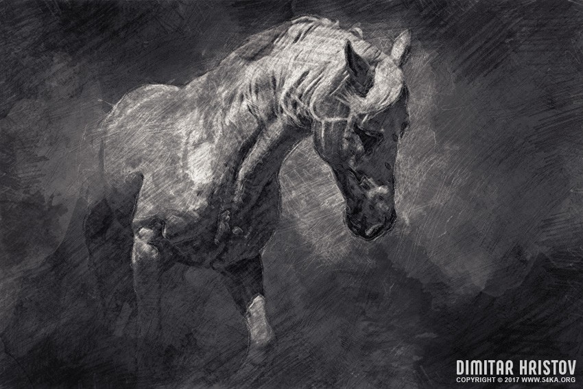 horse by 54ka :: Horse :: view all expressive  :: Figure Drawing Female Image charcoal Body Sketch study Pose pencil Human Body
