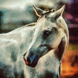 White Horse Painting Portrait
