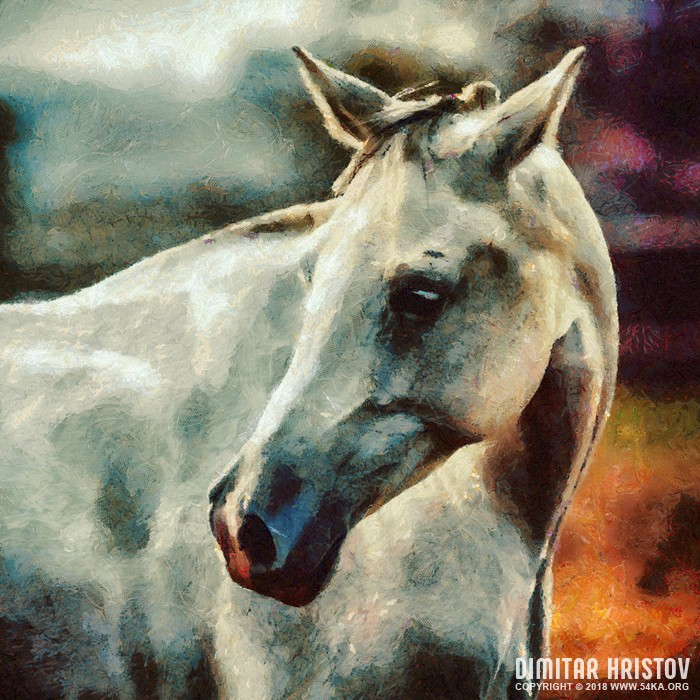 white horse painting portrait by 54ka :: White Horse Painting Portrait :: view all painting  :: Figure Drawing Female Image charcoal Body Sketch study Pose pencil Human Body