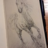 Horse quick sketch drawing