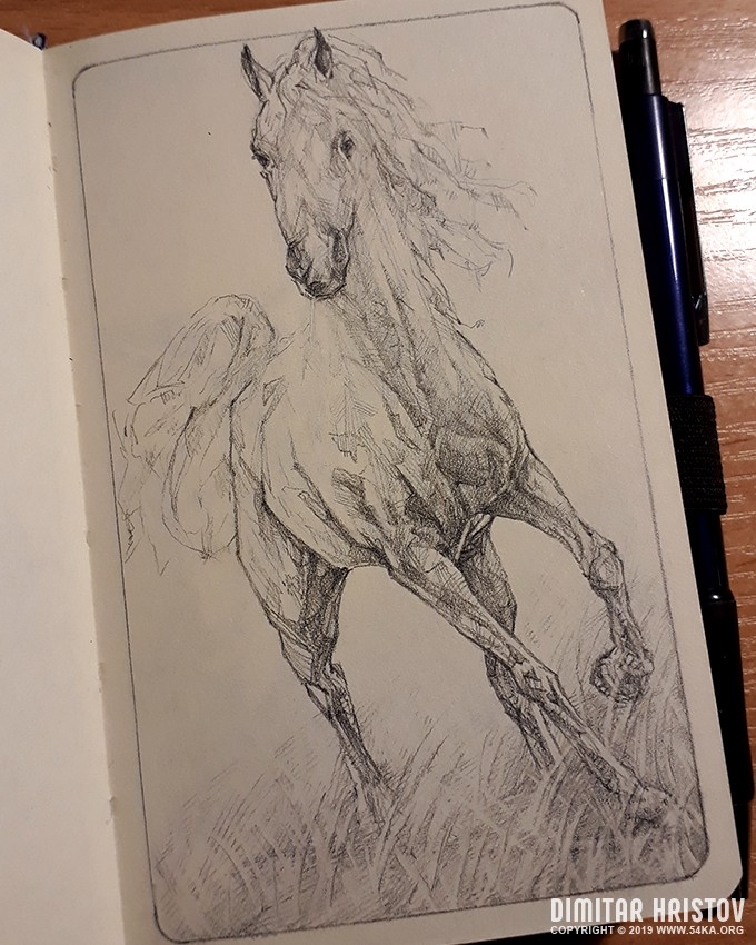 horse quick sketch drawing by 54ka :: Horse quick sketch drawing :: view all sketchbook pencil art featured  :: Figure Drawing Female Image charcoal Body Sketch study Pose pencil Human Body
