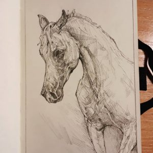 Horse portrait – sketchbook drawing