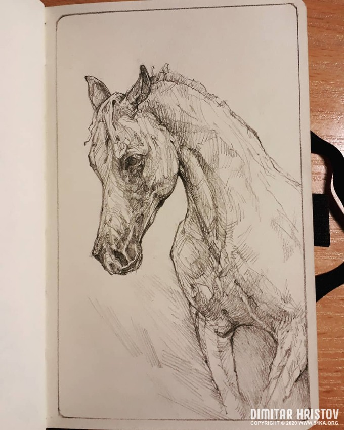 horse portrait sketchbook drawing by 54ka :: Horse portrait   sketchbook drawing :: view all sketchbook pencil art featured  :: Figure Drawing Female Image charcoal Body Sketch study Pose pencil Human Body