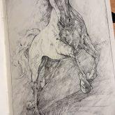 Jumping Horse – Sketchbook drawing