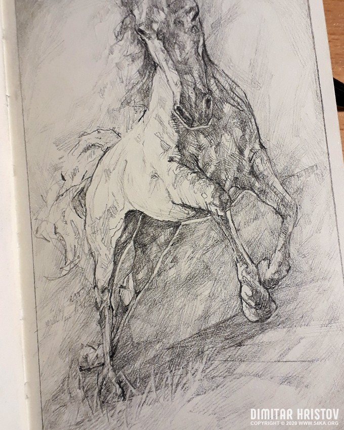 jumping horse sketchbook drawing by 54ka :: Jumping Horse   Sketchbook drawing :: view all sketchbook pencil art featured  :: Figure Drawing Female Image charcoal Body Sketch study Pose pencil Human Body