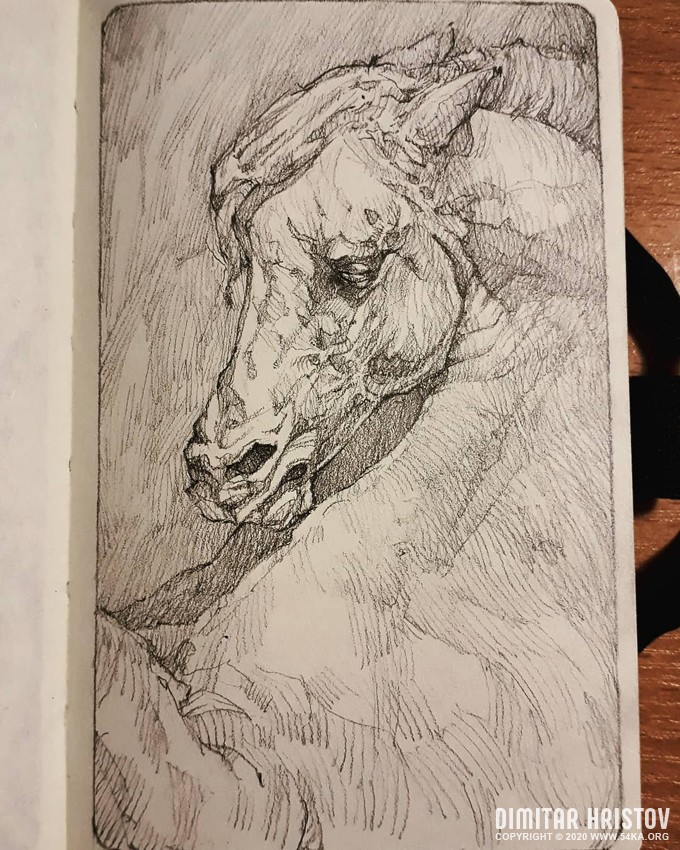 horse portrait sketchbook portrait by 54ka :: Horse portrait   Sketchbook Portrait :: view all sketchbook pencil art featured  :: Figure Drawing Female Image charcoal Body Sketch study Pose pencil Human Body