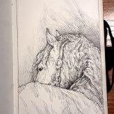 The Lonely Horse Portrait – Sketchbook Portrait