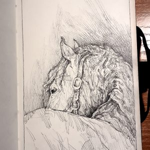 The Lonely Horse Portrait – Sketchbook Portrait